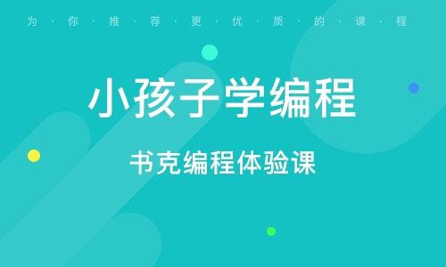 北京少兒編程學習