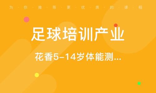 廣州足球培訓產業