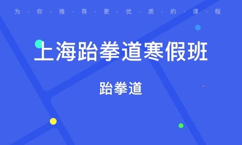 上海跆拳道寒假班