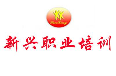 南京新興職業技術培訓