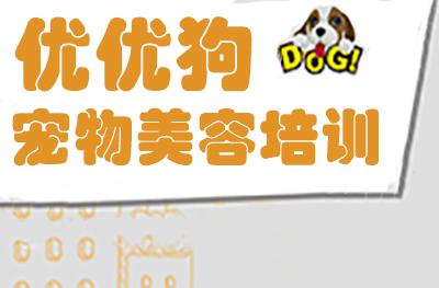 合肥優優狗寵物美容培訓