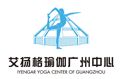 广州艾扬格瑜伽培训