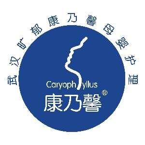 武汉康乃馨职业学校