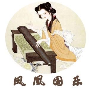 深圳鳳凰國樂琴行