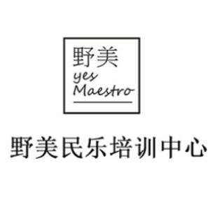 武漢野美民樂培訓