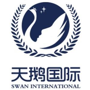 西安天鹅国际少儿艺术学院