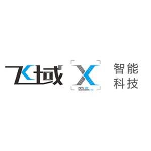 广州飞域智能科技