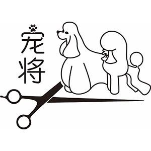 泉州寵將國際寵物美容培訓