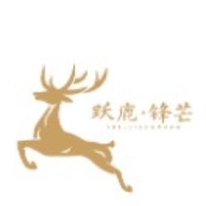 深圳躍鹿鋒芒藝考培訓