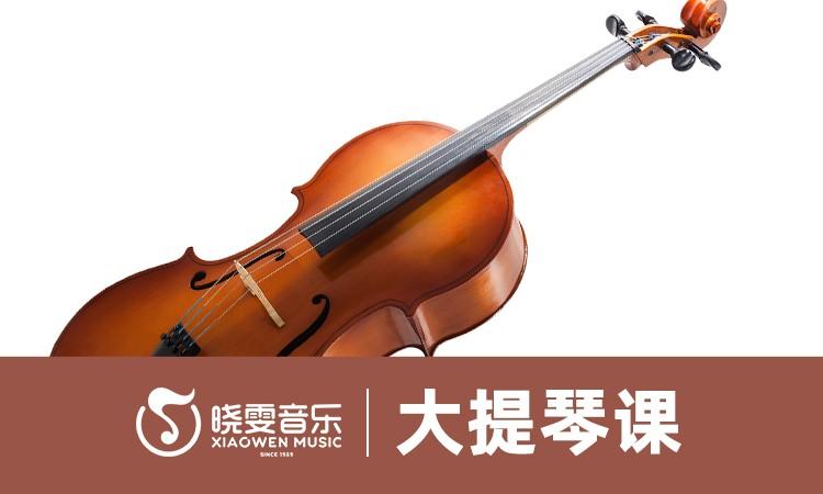 南京大提琴培訓機構