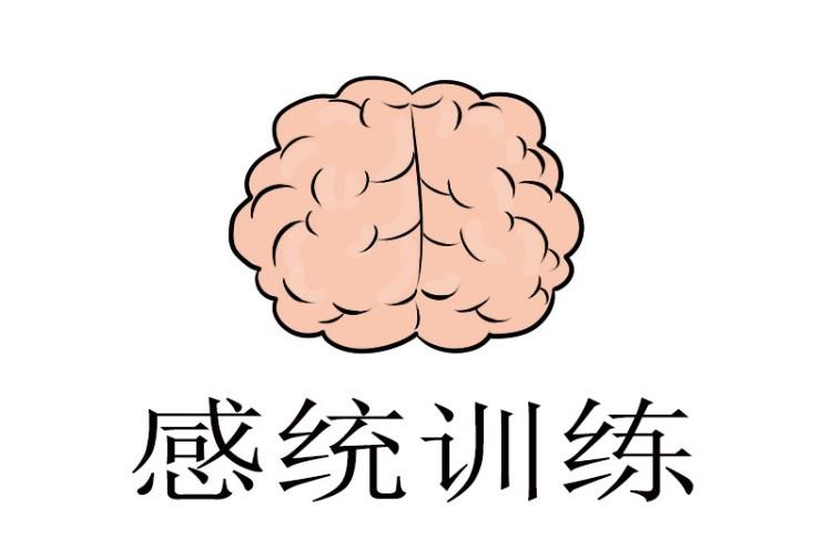 東莞感統教育培訓